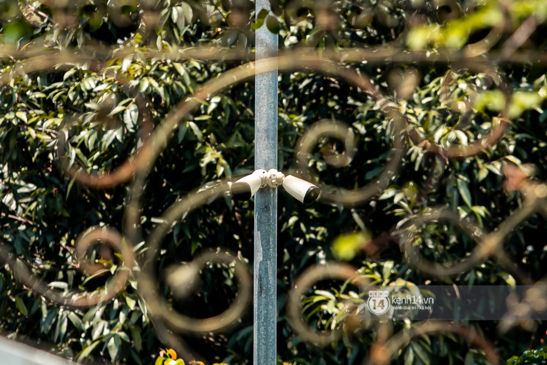 Về thăm Đền thờ Tổ nghiệp của NS Hoài Linh sau loạt lùm xùm từ thiện: Camera bố trí dày đặc, hàng xóm kể không bao giờ thấy mặt - Ảnh 8.