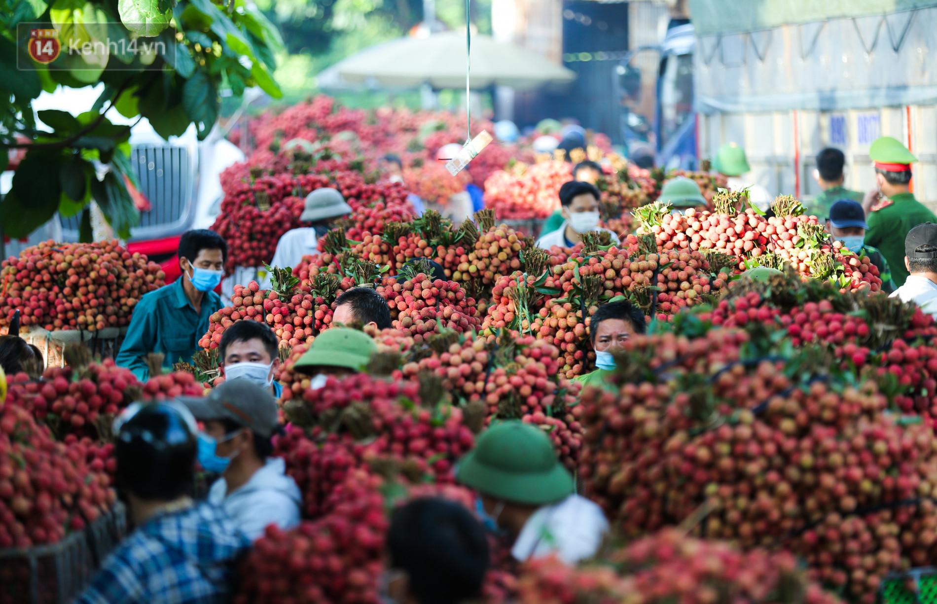 Ảnh: Nông dân Bắc Giang nối đuôi nhau chở vải thiều ra chợ, đường quê đỏ rực một màu - Ảnh 6.