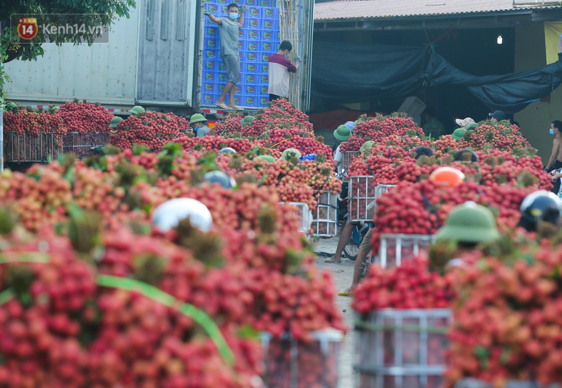 Ảnh: Nông dân Bắc Giang nối đuôi nhau chở vải thiều ra chợ, đường quê đỏ rực một màu - Ảnh 9.