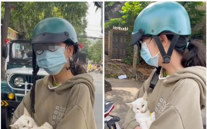 Vụ xử phạt cặp đôi đưa mèo ốm đi khám thú y: Sở Thông tin và Truyền thông Long An lên tiếng Ảnh 2