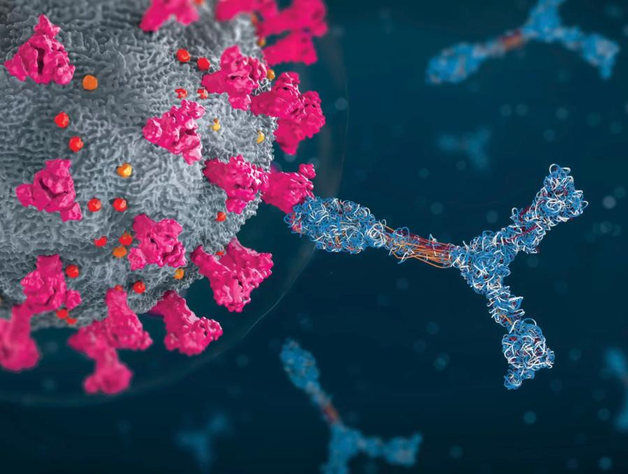 Phát hiện một số người có miễn dịch siêu nhân sau khi tiêm vaccine Covid-19 - Ảnh 1.
