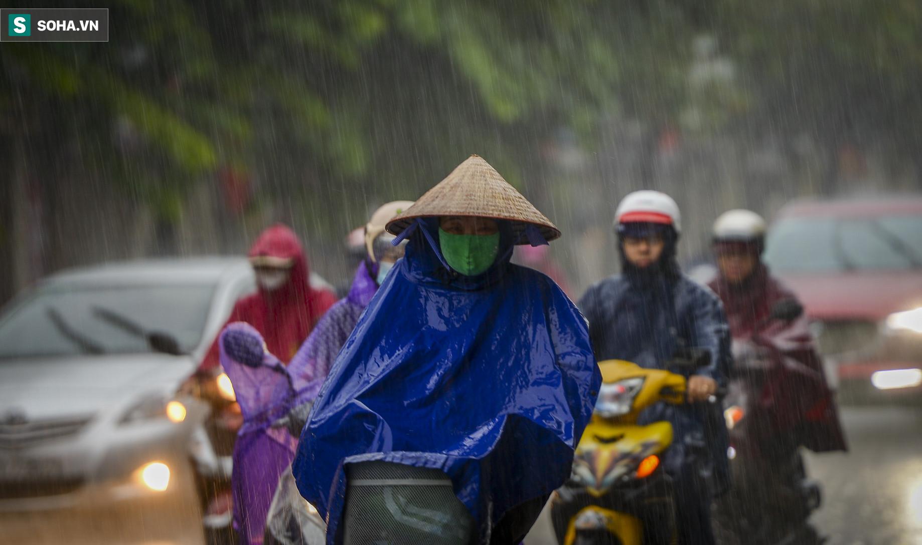 Cơn mưa rào khiến trời Hà Nội 8h sáng vẫn tối đen như mực - Ảnh 8.