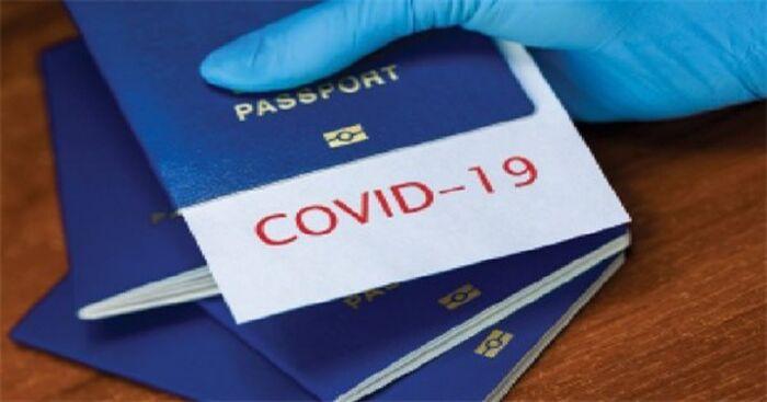 Thủ tướng đồng ý công nhận 'hộ chiếu vaccine' giữa Việt Nam với các quốc gia cần thiết Ảnh 1