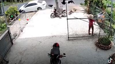Clip: Ngủ gật trên đường, tài xế ô tô đâm nát xe máy, hai bố con văng lên vỉa hè