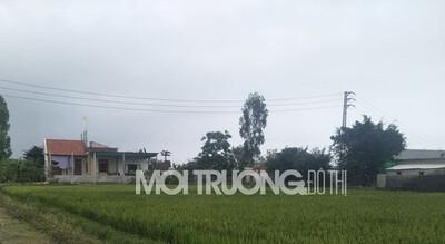 Nghệ An: Loạn xạ việc xây dựng trên đất nông nghiệp không bị xử lý