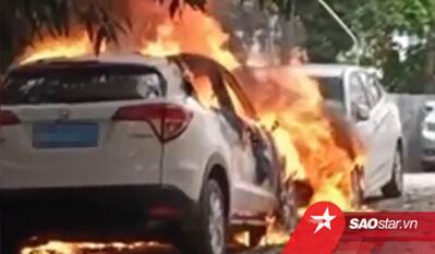 Bé trai 10 tuổi phóng hỏa đốt 4 ô tô: 'Cháu muốn được nhìn thấy chúng nổ tung'