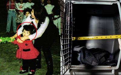 Bé gái 3 qua đời do bị ác mẫu hành hạ, nhốt trong lồng chó, ngày được ra ngoài cũng là ngày cuối đời