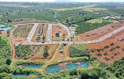Lâm Đồng: Loạn phân lô bán nền và những quả đồi xanh bị hủy hoại?