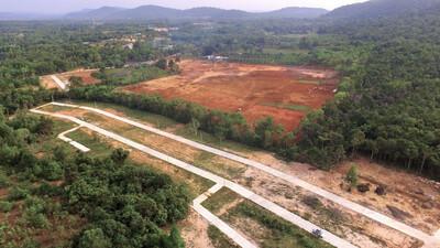 Nỗi lo mất rừng vì những dự án farmstay