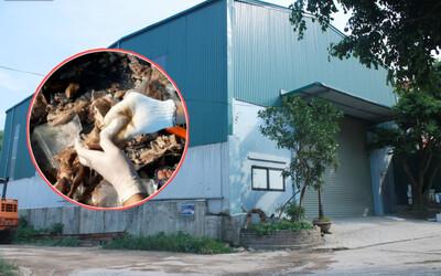Người dân ngỡ ngàng khi biết sống cạnh kho ma túy ngụy trang trong dạ dày lợn: Xưởng lắp nhiều camera, luôn đóng cửa