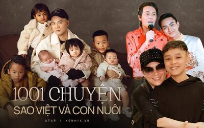 1001 chuyện con nuôi trong showbiz: Phi Nhung gặp liên hoàn biến, Hoài Linh nghi cạch mặt Hoài Lâm đến nay vẫn chưa hết