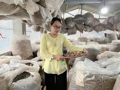 Lương y Nguyễn Thị Thái- 'Khắc tinh' của bệnh vô sinh, hiếm muộn