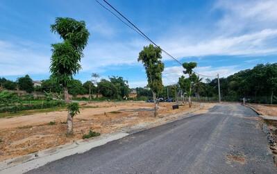 Phú Thọ: 'Phù phép' hàng ngàn m2 đất ao, vườn để phân lô bán nền?