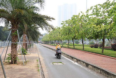 Công ty cây xanh Hà Nộitrúng ba gói thầu trị giá gần 2000 tỉ tại Sở Xây dựng TP. Hà Nội chỉ trong một ngày