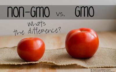 Thực phẩm biến đổi gen có gây hại cho sức khỏe không? Hướng dẫn 2 cách phân biệt với thực phẩm truyền thống