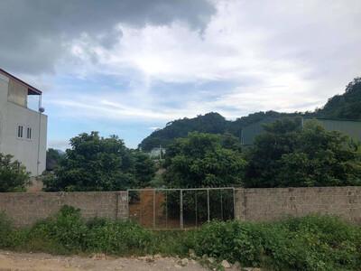 Mộc Châu, Sơn La: Gần 4000m2 đất công bị bán lấy tiền chia nhau