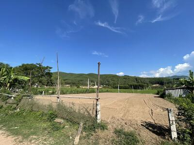 Nghệ An: Kết luận xử lý vụ quan thôn tự ý bán đất của huyện Tân Kỳ