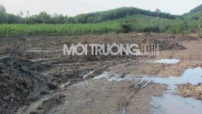 Nghệ An: Dân tố doanh nghiệp ngang nhiên đổ hàng trăm tấn bùn thải
