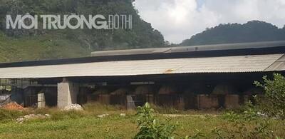 Sơn La: Công ty TNHH năng lượng Mộc Châu Xanh 'đầu độc' người dân