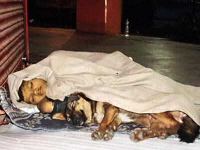 Cha ngồi tù, mẹ bỏ rơi, đứa trẻ vô gia cư sống cùng chó làm tan chảy bao trái tim