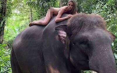 Nữ người mẫu gây tranh cãi với bức ảnh khỏa thân cưỡi voi