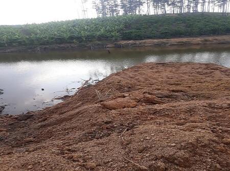 Lâm Đồng: Ngang nhiên san lấp lòng hồ, lấn chiếm đất rừng