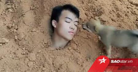 Tự đào hố chôn mình để 'thử lòng' chó cưng và cái kết rơi nước mắt